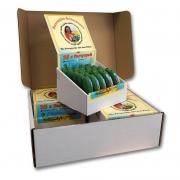 Spreewälder Gurkenwasser 100er Kiste - Kräuterlikör 20ml - 30% Vol